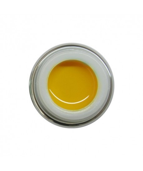 496 - Giallo Caldo 5ml  Ego Nails