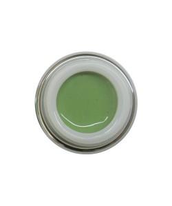 488 - Verde Pastello 5ml